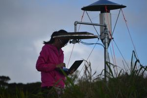 Student standing next to instrument tower examines her laptop amid grasses