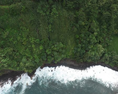 An overhead view shows white surf crashing along a dark sandy coastline backed by green vegetation.