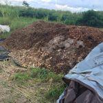 A pile of mulch sits in a green field