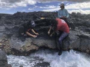 Students sample shells on steep rocks with water churning below.