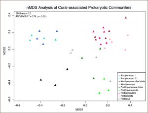 Graph of experimental results showing clusters of coral bacterial DNA.