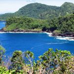 Scenic lush coastline