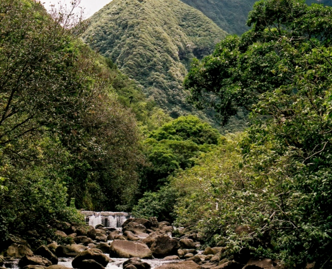 A rocky stream bed sits between overgrown banks with high green hills in the background