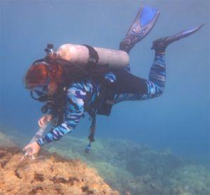 A scuba diver floats above a coral outcrop holding a water sampling tube.