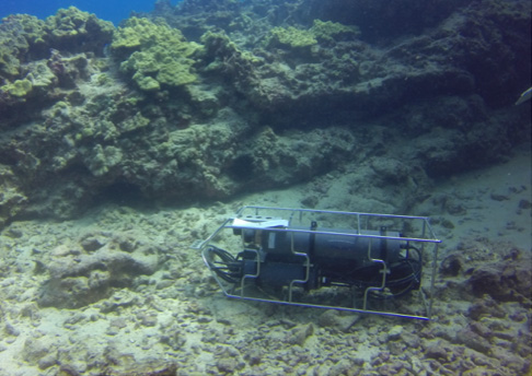 A boxy instrument sits near a coral outcrop on the rocky sea bottom.