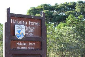 Park service sign for the Hakalau Forest National Wildlife Refuge in front of dense forest