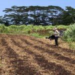 MCC Graduate Student Film on Climate-Smart Agriculture