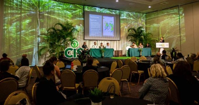 Panel at 10th Annual CIS with audience in fore and stage in background with curtains that have palm trees projected upon them.