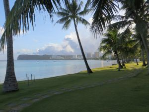 A view through palm trees on manicured lawn looks across a flat bay towards hotels and office buildings